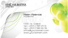 Визитни картички №1262